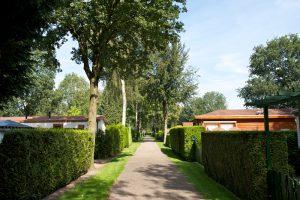 Caravanpark de Hofstee Nunspeet park weg